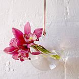 Glass Hanging Vase Bubble designed in Australia by Love Hate