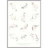 Marsupials A3 Print by Amy Borrell